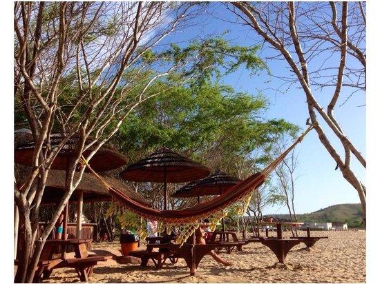 Carpe Diem: beach area by the bar