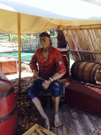 Pirate's Island Adventure Golf: One of many pirates there!