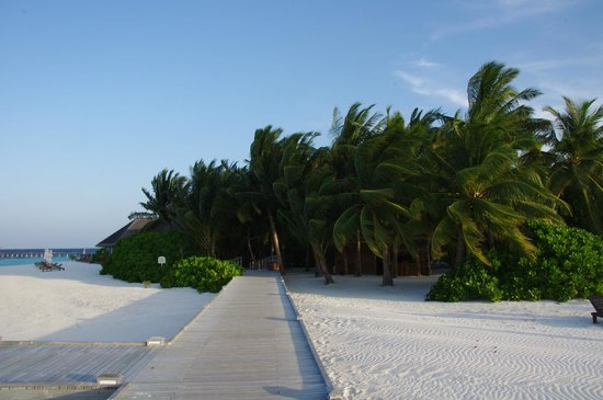 Vakarufalhi Island Resort : Footsteps on boardwalk