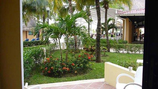 Viva Wyndham Maya: Patio View