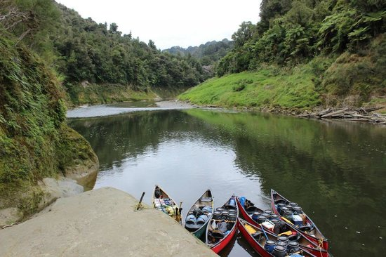 Taumarunui Canoe Hire and Jet Boat Tours : canoes on river
