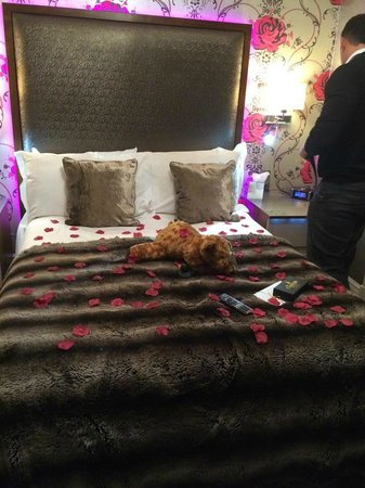 Cranleigh Boutique: bed