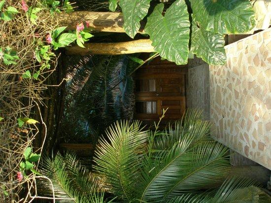 Belcampo Lodge : Massage area
