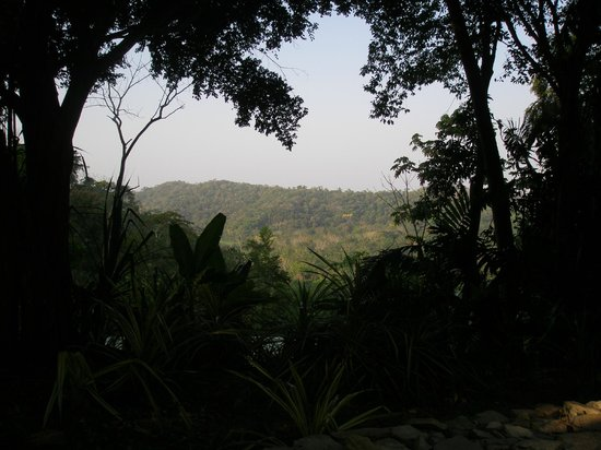 Belcampo Lodge: View from the lodge