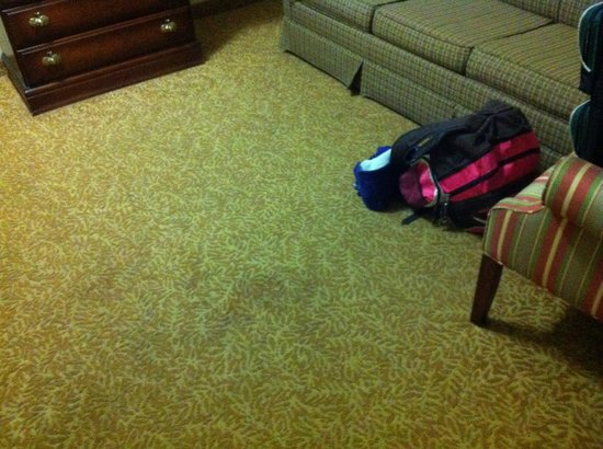 Country Inn & Suites By Carlson, Louisville South: Nice stain