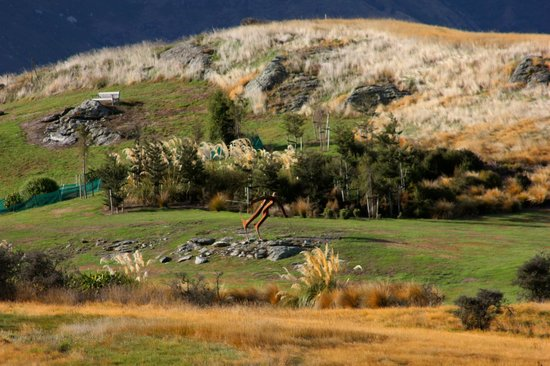 Jacks Point Golf Course Queenstown: view 4