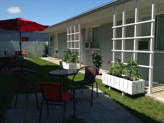 Hotel Kennedy : Petit espace vert ou l'on peut se détendre