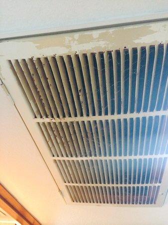 Days Inn & Suites Grand Rapids/Grandville: Heat vent in room- yuck