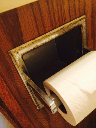 Days Inn & Suites Grand Rapids/Grandville: Toilet paper holder