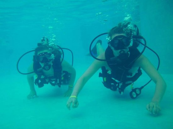 Dressel Divers: Pool Trial