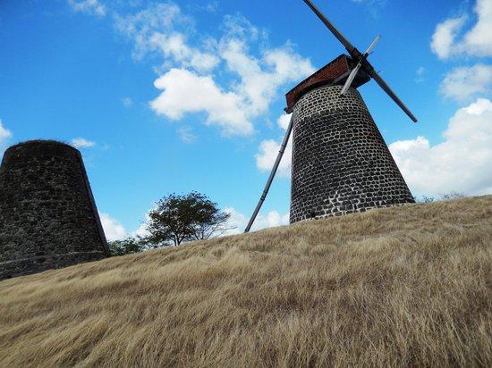 Antigua V.I.P. Tours: Windmill