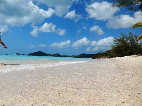 Antigua V.I.P. Tours: Gorgeous