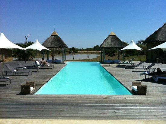 Kapama River Lodge: Piscina