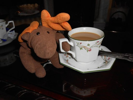 Beech Lodge B&B: A cup of tea