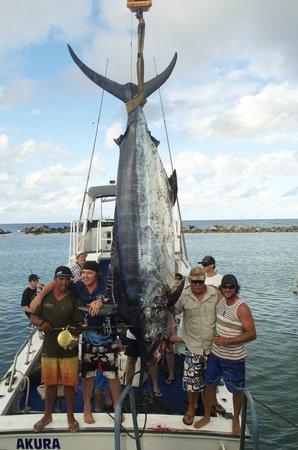 Rarotonga game fishing