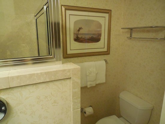 The Inn on Biltmore Estate: tiny bathroom - first room