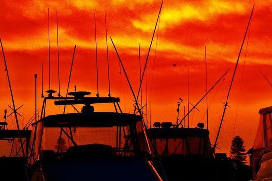 North Coast Holiday Parks Forster Beach: Sunset over Forster marina