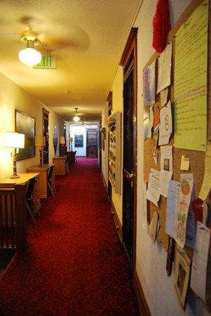 Melbourne International Hotel & Hostel: The hallway