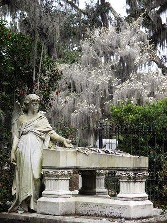 Bonaventure Cemetery : Bonaventure March 2013