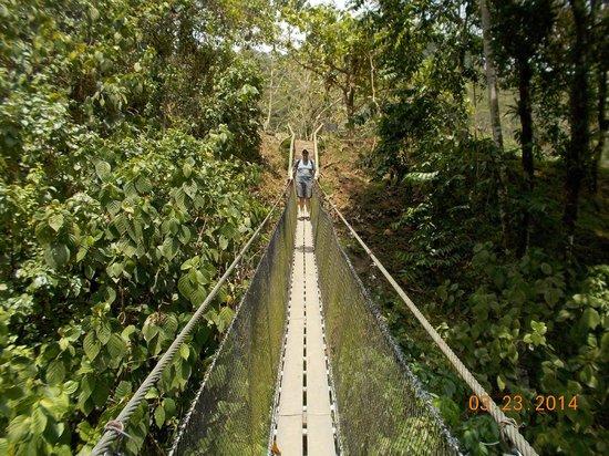 Rafiki Safari Lodge : Supsension Bridge on the Aqua Hike