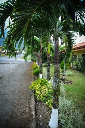 Hotel Vista del Cerro: landscaping