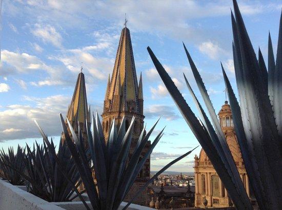 One Guadalajara Centro Historico: Catedral desde terraza