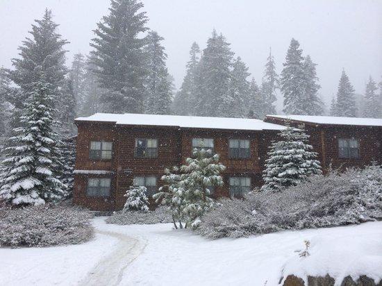 Wuksachi Lodge: Siliman Bldg