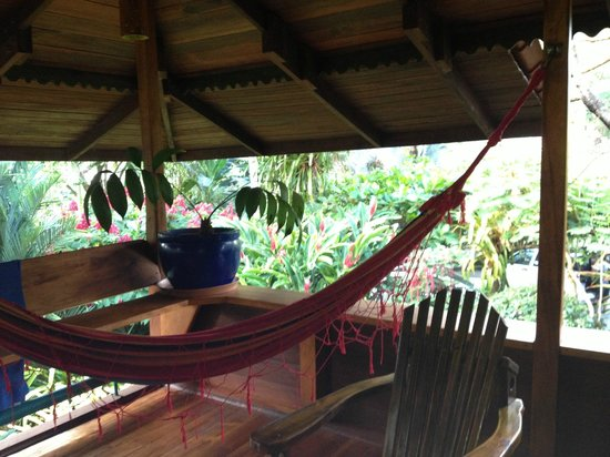 Hotel Banana Azul : hammock in the living room