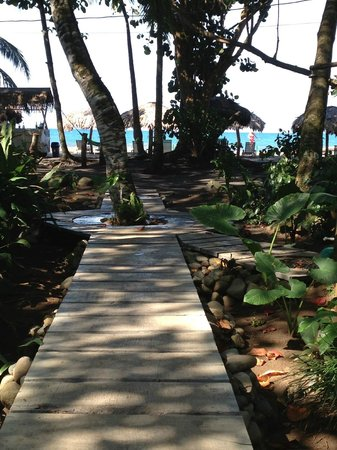 Hotel Banana Azul : path to beach