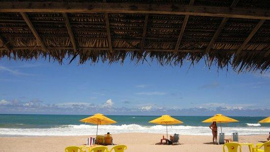 Praia De Maracaipe : Mar azul, tranquilidade e natureza!