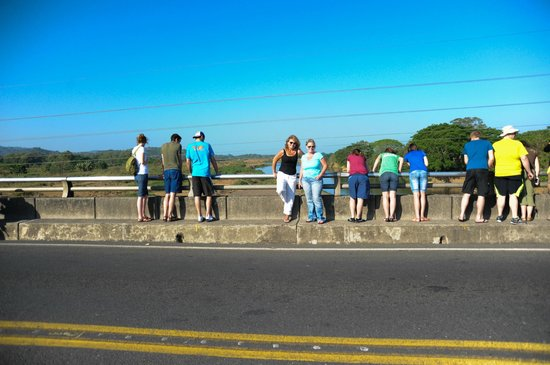 Cuchi Transfers and Tours: Luis took a picture of us on the bridge...he's awesome like that!