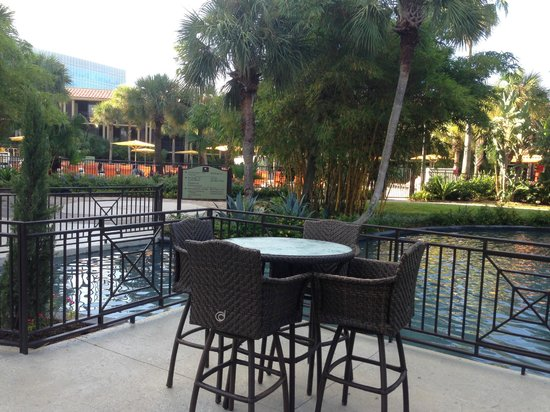 Doubletree by Hilton Orlando at SeaWorld: Swimming Pool