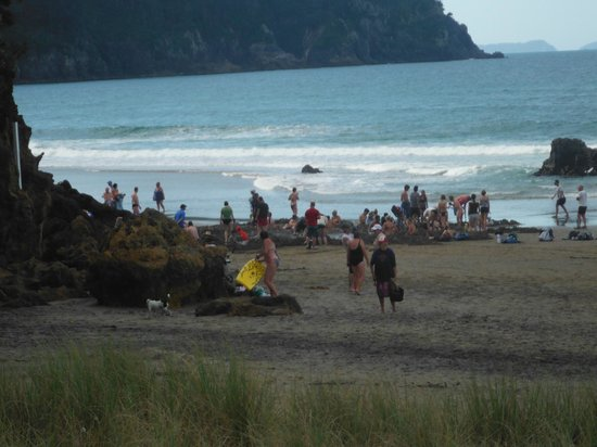 Hot Water Beach TOP 10 Holiday Park: DOn't expect any privacy at HOt Water Beach. There were more around the corner