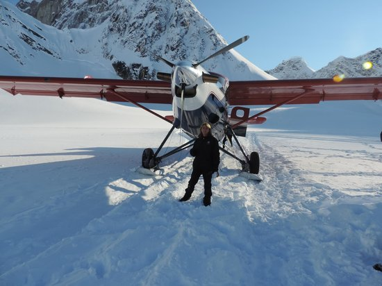 Talkeetna Air Taxi: The Otter that landed us on the glacier in Denali
