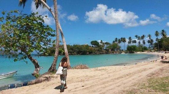 Villa La Caleta: Playa rincon