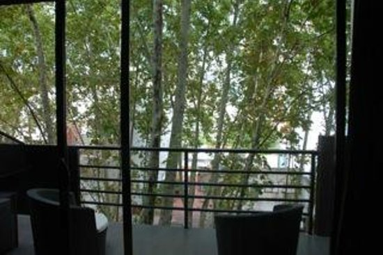 Palermo Tower by P Hotels: I LOVED the trees!