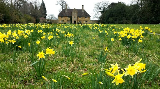 Barrington Court: Spring had arrived