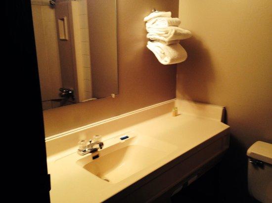 Cedar Inn Motel: Bathroom