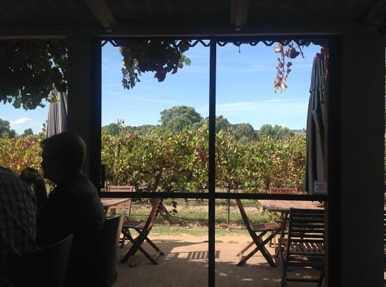Ekhidna Wines McLaren Vale Cellar Door: Ekhidna Winery is a great spot to spend the afternoon.