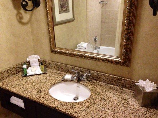 Hilton Houston NASA Clear Lake: Bathroom sink