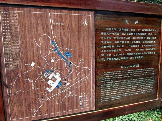 Longjing tea fields : Longjing Village.