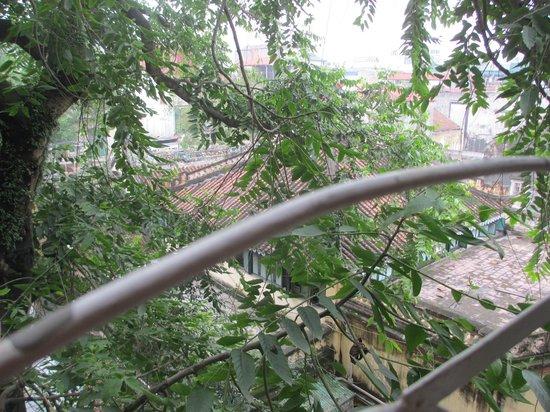 Hanoi Holiday Diamond Hotel: Leafy view from room 505