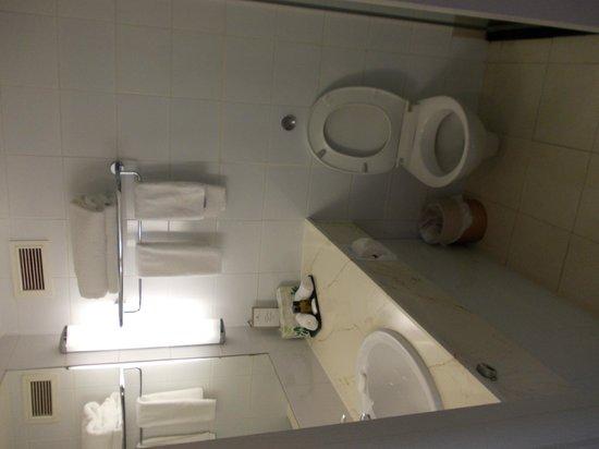 Copthorne Hotel Auckland City: Bath