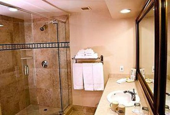 Grand Vista Hotel: What their brochure shows as their bathroom
