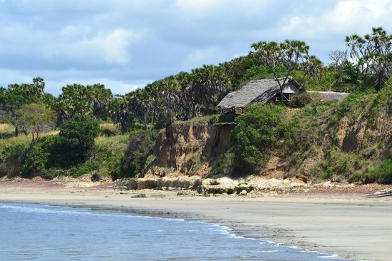 Mkoma Bay Tented Lodge: Picture of the pool/beach area where dining is also possible.