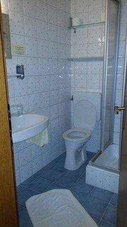 Hotel Seehof: دورة مياه