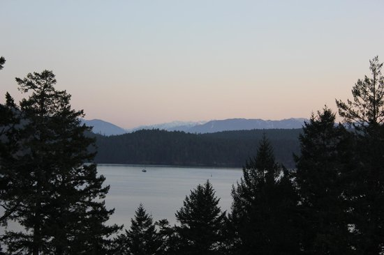 Moonlit Cove B&B: fantastic views!