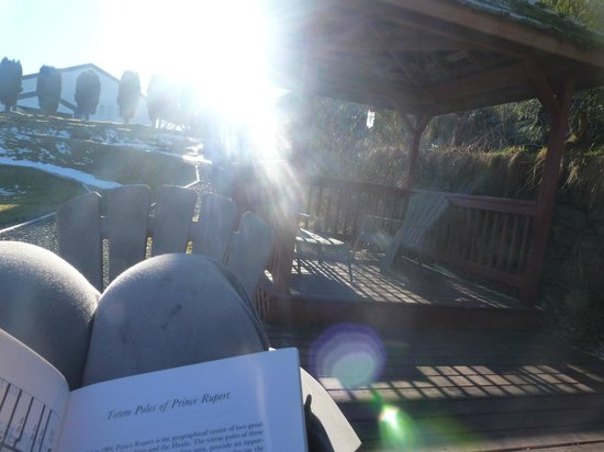 Cow Bay Pioneer Guesthouse: Nice place in the garden to read a book with the sun