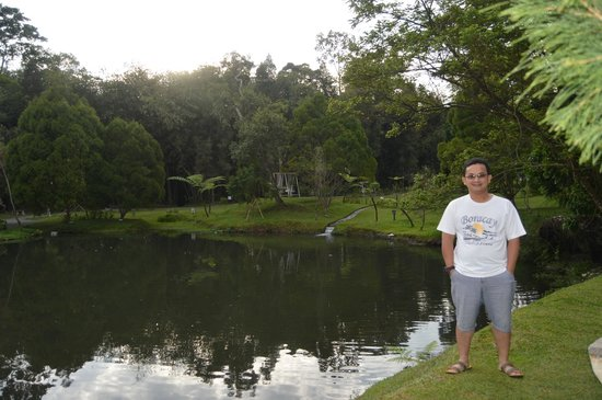 The Hill Hotel & Resort Sibolangit: View