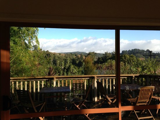 Waitomo Caves Guest Lodge: Beautiful view from the deck